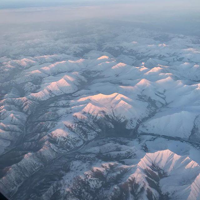 ロシア上空。山の雪がすごい!