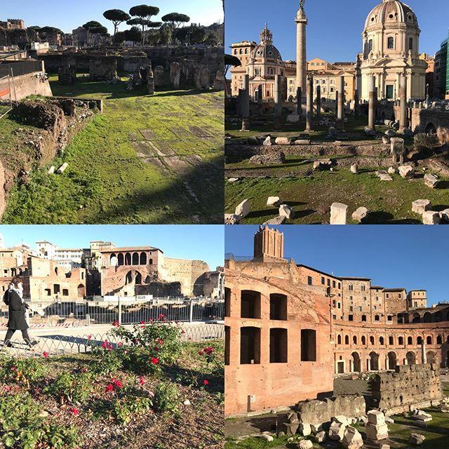 ローマ観光最終日 フォロ・ロマーノ