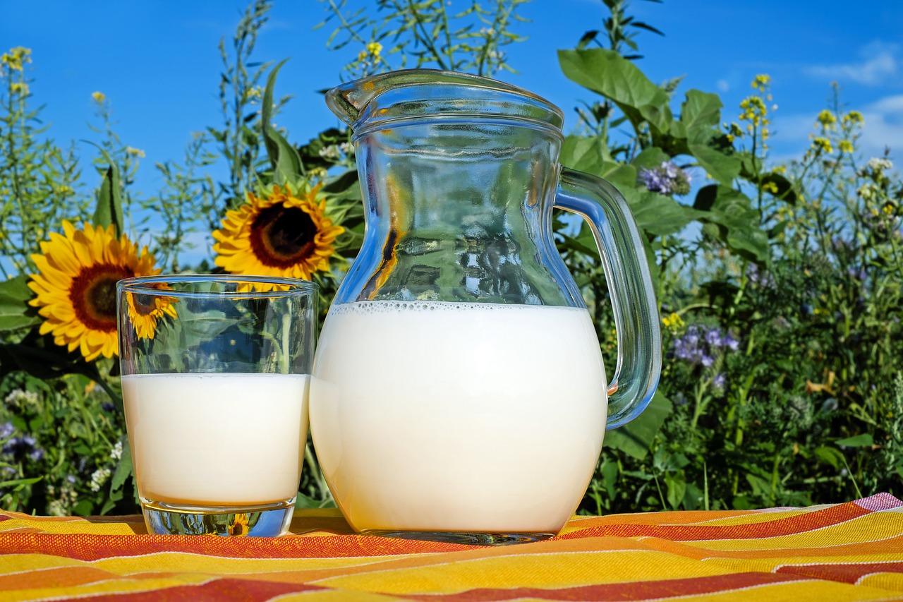 「もどき」が多すぎる 牛乳ももどきだらけ 調味料ももどきだらけ