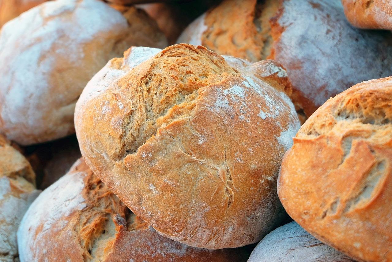 読破 「小麦は食べるな!」ウイリアム・デイビス著 #糖質制限