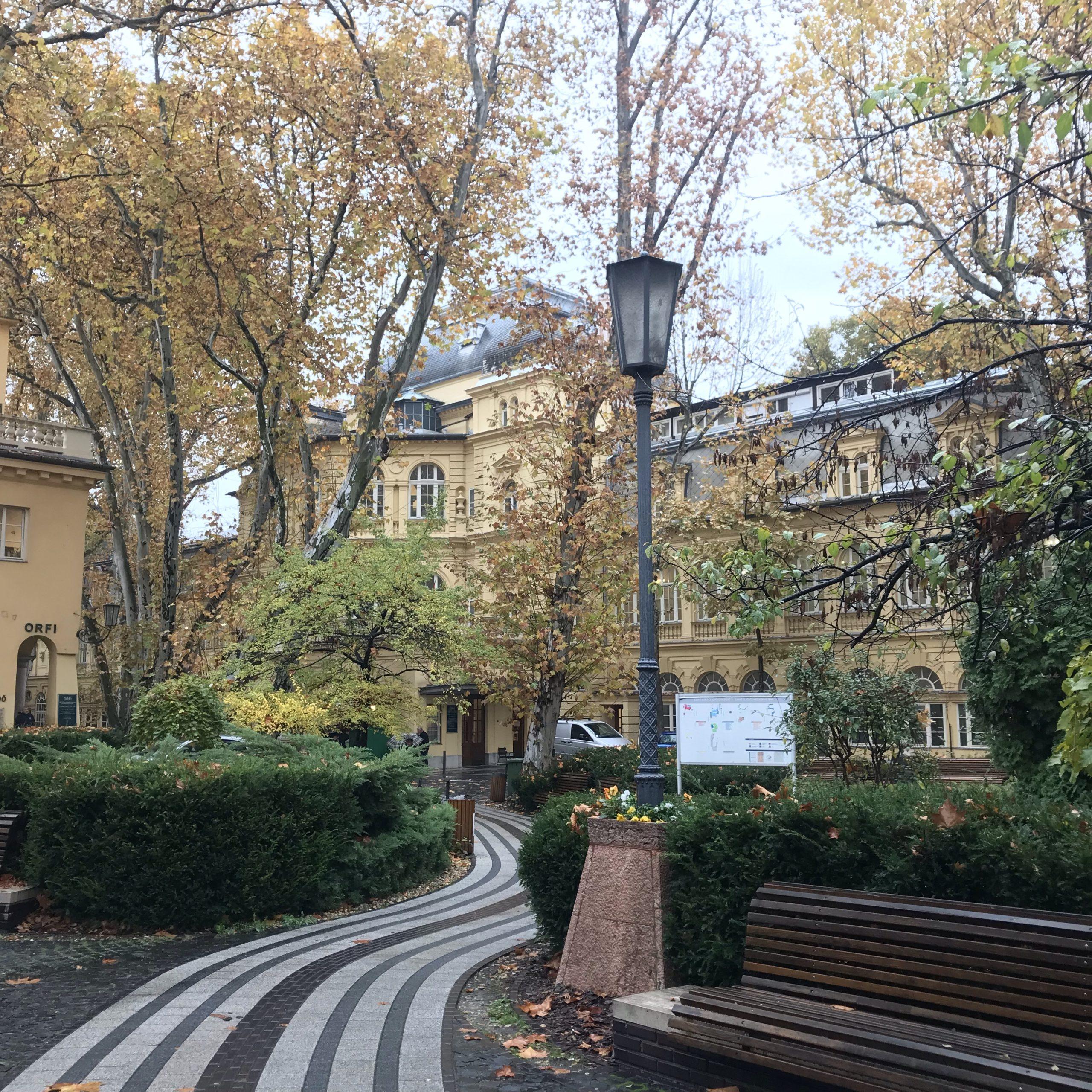 ブダペスト旅行 温泉情報 第3位 ルカーチ温泉   人生いろいろ 咲き乱れ